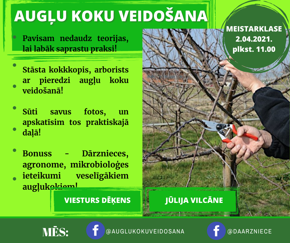 Meistarklase augļu koku veidošanā, kopā ar kokkopi-arboristu Viesturu Dēķenu!