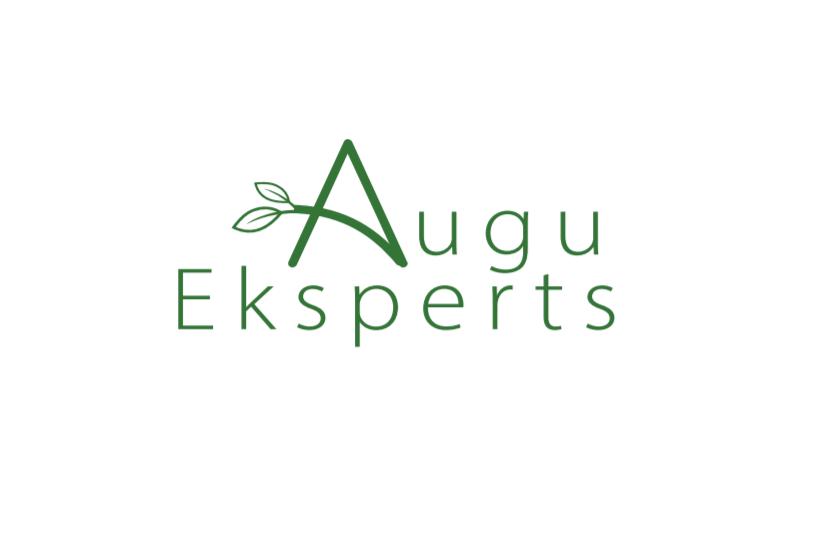 www.augueksperts.lv